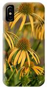 Summer Yellow Echinacea Flowers IPhone Case
