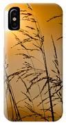 Sun Flood IPhone Case