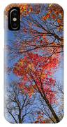 Sun In Fall Forest Canopy  IPhone Case