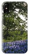 Sunburst Oak And Bluebonnets IPhone Case