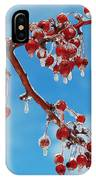 Sunday With Cherries On Top IPhone Case