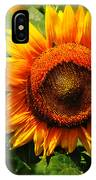 Sunflower At Buttonwood Farm IPhone Case