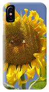 Sunflower At Latrun IPhone Case