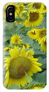Sunflower Beauty II IPhone Case