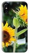 Sunflower Duo IPhone Case