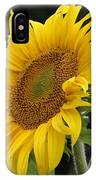 Sunflower Looking To The Sky IPhone Case