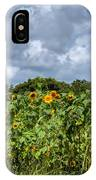 Sunflower Maze IPhone Case