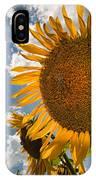 Sunflower Study 2 IPhone Case