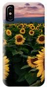 Sunflower Sunset II IPhone Case