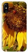Sunflower With Ladybug IPhone Case