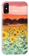 Sunflowers, Corbada, Spain IPhone Case