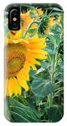 Sunflowers For Wishes IPhone Case