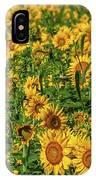 Sunflowers Helianthus Annuus Growing IPhone Case