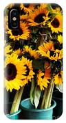 Sunflowers In Blue Bowls IPhone Case