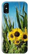 Sunflowers In The Corn Field IPhone Case
