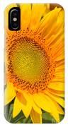 Sunkissed Sunflower IPhone Case