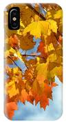 Sunlight And Shadow - Autumn Leaves Two IPhone Case