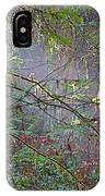 Sunlight Highlights In Armstrong Redwoods State Preserve Near Guerneville-ca IPhone Case
