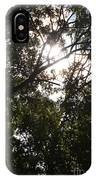 Sunlight Through Branches I IPhone Case