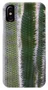 Sunlight Through Cacti IPhone Case