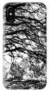 Sunlight Through Spanish Oak Tree - Black And White IPhone Case