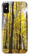 Sunburst Through Trees IPhone Case