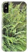 Sunlit Ferns IPhone Case
