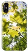 Sunlit Leaves IPhone Case