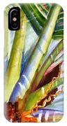 Sunlit Palm Fronds IPhone Case