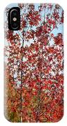 Sunlit Red In November 2012 IPhone Case