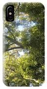 Sunlit Tree Tops IPhone Case