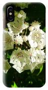Sunlit Wildflower IPhone Case