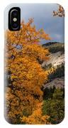 Sunlit Window IPhone Case