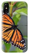 Sunning Royalty II IPhone Case