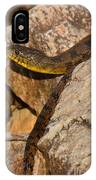 Sunning Snake IPhone Case