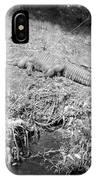 Sunny Gator Black And White IPhone Case