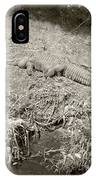 Sunny Gator Sepia  IPhone Case