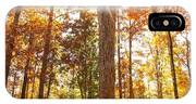 Sunny Hardwoods IPhone Case