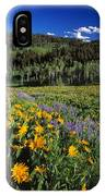 Sunny Spring Day IPhone Case