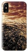 Sunrise And Lacy  Tree IPhone Case
