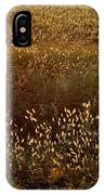 Sunrise On Wild Grass IPhone Case