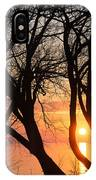 Sunrise Through The Chaos Of Willow Branches IPhone Case