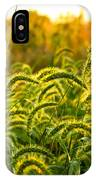 Sunset Grasses IPhone Case