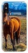 Sunset Bay Horse Heber Valley Utah IPhone Case