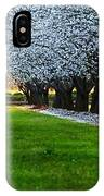 Sunset In The Almond Orchard IPhone Case