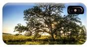 Sunset Oak IPhone X Case
