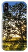 Sunset Oak IPhone Case