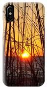 Sunset Through Grasses IPhone Case