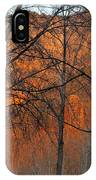 Sunset Through The Forest IPhone Case