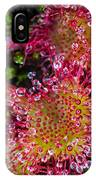 Sundew IPhone Case